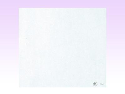 (特)天ぷら敷紙 小(100枚入)