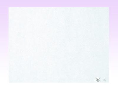 (特)天ぷら敷紙 大(100枚入)