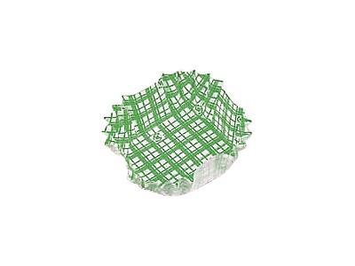 フードケース格子 正角 緑(500枚入)