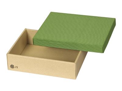 カラーボックス75 緑 (中)