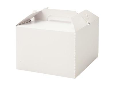 KS4500 トールキャリーボックス (白無地)