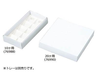 フルーツケーキ 白ム地 10ヶ用(トレーなし)