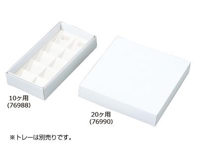 フルーツケーキ 白ム地 20ヶ用(トレーなし)