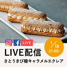 LIVE動画