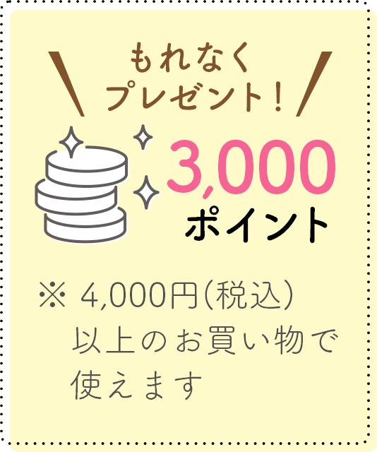もれなく1,000ポイントプレゼント!※4,000円(税込)以上のお買い物で使えます