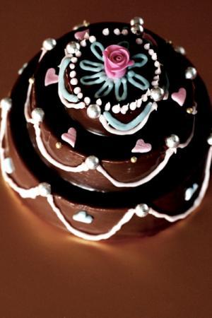 Lovely*生チョコケーキ