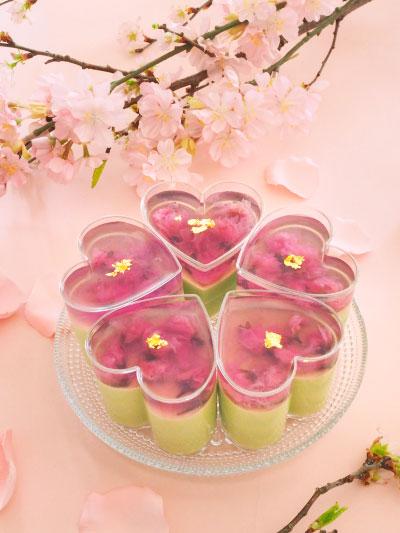 桜ゼリーと抹茶豆乳クリームのムース