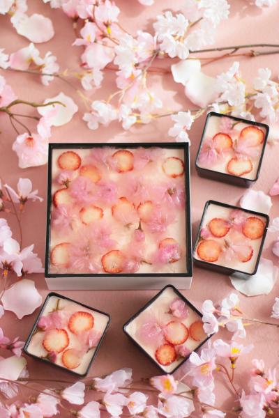 お重仕立て♪桜と苺のレアチーズケーキ