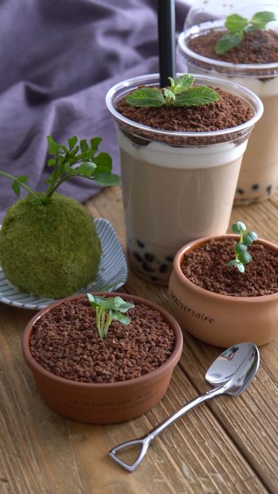 食べられる盆栽⁉盆栽スイーツ3種