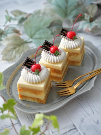 プリン風ムースケーキ