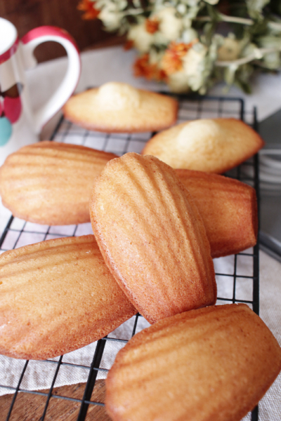発酵バターのマドレーヌ
