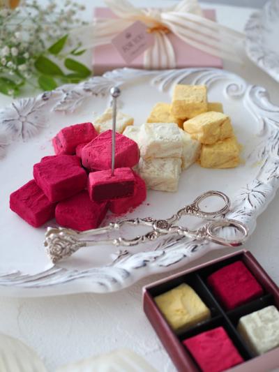 4種のフルーツ生チョコ