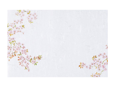 テーブルマット 桜 1(100枚入り)