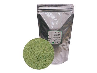 冷蔵 トッピング抹茶 パウダー 500g