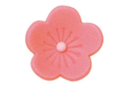チョコ・梅(ピンク)天然生用 F0-5221