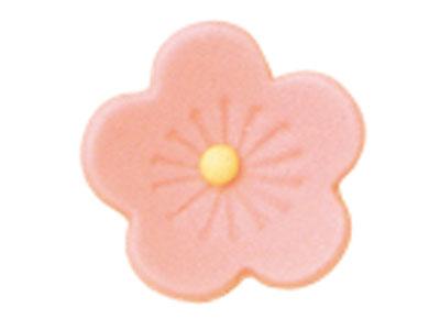 チョコ・桃の香(ピンク)生用 F0-5231