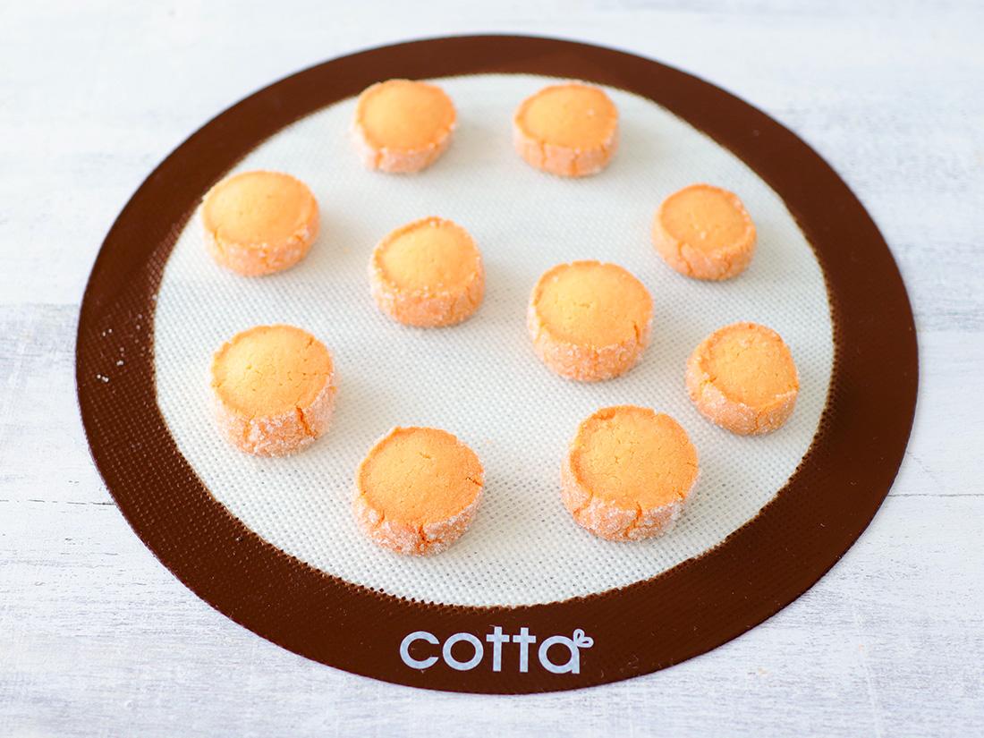 cotta シルパン(径260)