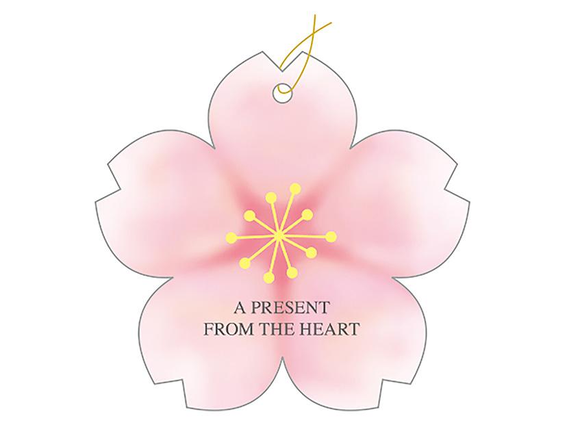タッグ 桜