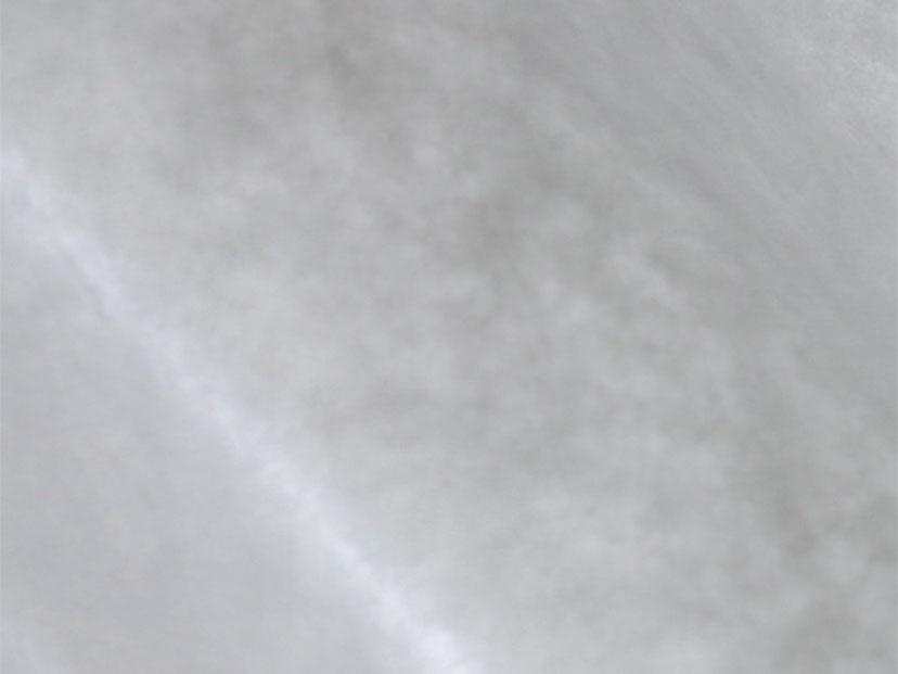 業務用WAXシート 純白393×272mm