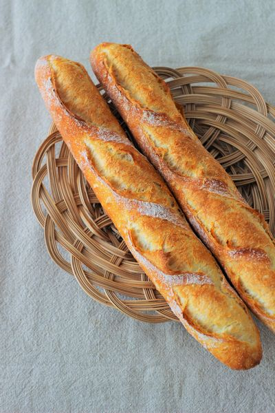 粉 用 フランス パン